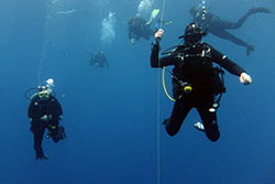 divers on a safety stop